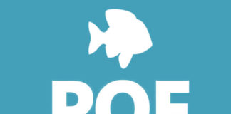 browse plenty of fish without signing up